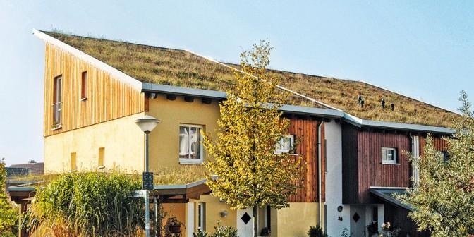 Extrupol M - Vsestranska zelena streha iz poliolefinov